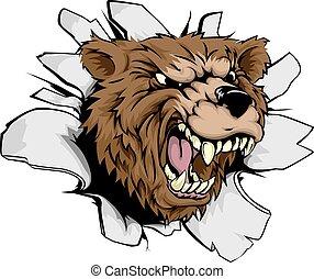 sfondamento, orso
