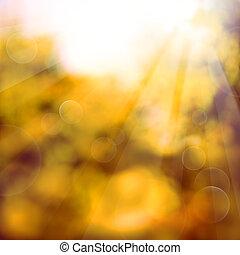 sfondo arancia, con, luce sole