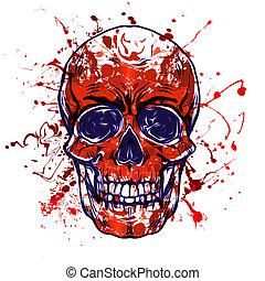 sfondo bianco, colorato, cranio, isolato