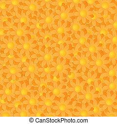sfondo colorato, gerbera
