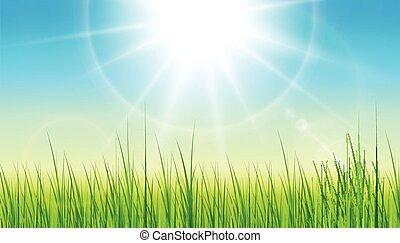 sfondo verde, con, sole