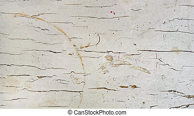 shabby chic wood texture