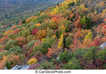 Shades of Fall on Mountain Slope - Waves of mountains turn...