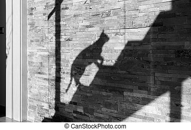 Shadow Cat - The shadow cat crept up the stairs