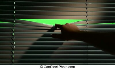Shadow falls on the jalousie when a person lowers them. Green screen