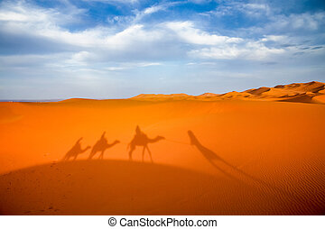 Shadow of a caravan on sand dunes