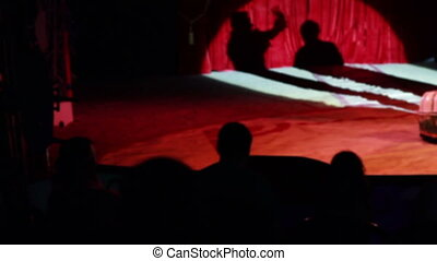 shadow of a clown on the stage at circus