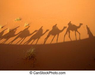 Shadow of caravan - Shadow of a caravan in the Sahara desert...