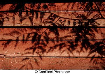 shadow of wall