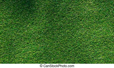 shadow on grass background