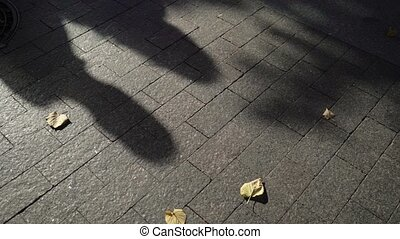 Shadow on the asphalt of lovely couple hugging