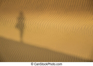 Shadow on the sand dunes