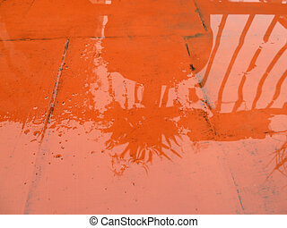 shadow reflection in puddle