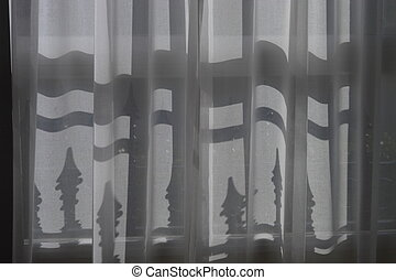 shadows behind the curtain