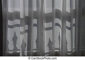 shadows behind the curtain