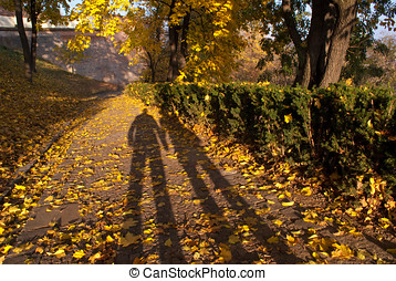 Shadows in Spilberk Park, Brno - Shadows of a couple in an...