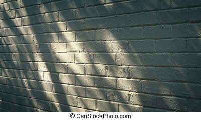 Shadows Moving On Building Wall In The Evening