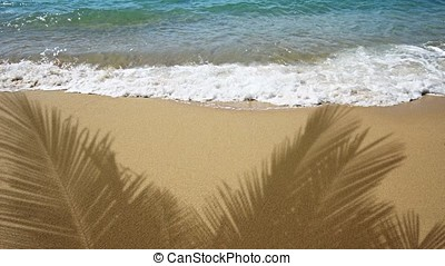 Shadows of Palm Leaves over Tropical Beach with Wave Sounds...