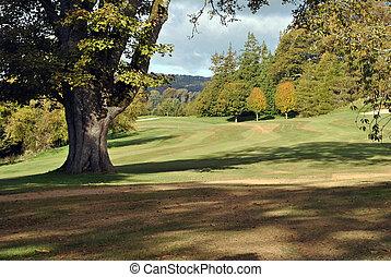 shadows on a golf course