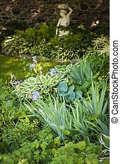 Shady garden with perennials - Lush green summer garden with...