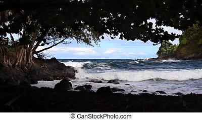 Shady Hawaiian Beach - Looking out from a shady beach at...