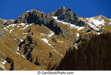 Shady valley - Upper valley in the austrian mountains