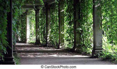 shady walkway with columns - Pleasant coolness shady alley...