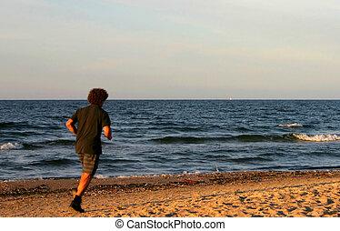 shaggy beach runner