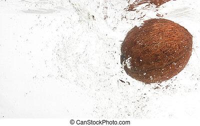 Shaggy,tasty coconut in water.