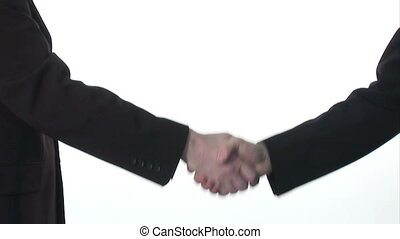 Ttwo businessmen shaking hands