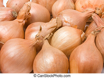 Shallot background - Background / texture image of a group...