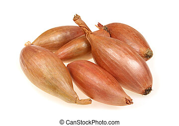 Shallot or scallion or griselle - vegetables similar to onion