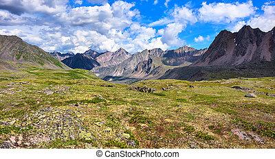 Shallow alpine tundra . Primordial nature of Eastern Siberia...