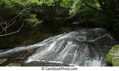 Shallow brook flowing down on rocky slope under green forest