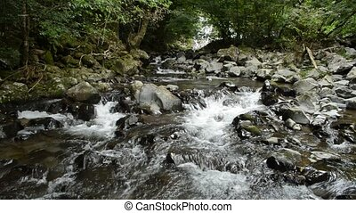 Shallow fast brook flowing among lot of stones in front of ...