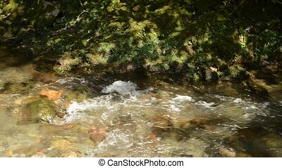 Shallow fast brook flowing side of green mossy rock
