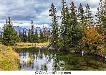 Shallow-water lakes and firs