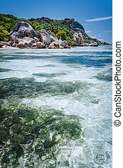 Shallow water with algal plants in front of unique Anse ...