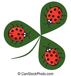 Shamrock wiht three ladybugs. Three little red beetles sitting on a green clover leaf. Beautiful cheerful illustration