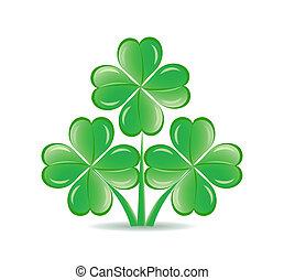 shamrocks, foglie, isolato, illustrazione, tre, quattro, fondo., tema, vettore, fortunato, bianco, st., giorno, patrick's