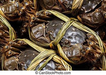 Shanghai crabs
