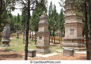 shao, tempel, chi, opgespoorde, lin, pagoda, xian, bos