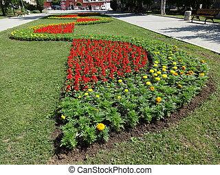 Shape of Flowers in a City Garden