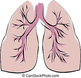 good lung - shape of good lung