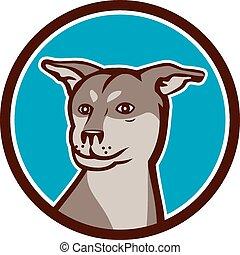 shar, kopf, hund, kreuz, pei, heiser, karikatur