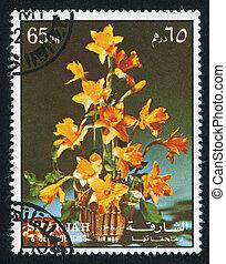 Hibiscus - SHARJAH AND DEPENDENCIES - CIRCA 1972: stamp ...