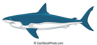 Abstract vector illustration of shark