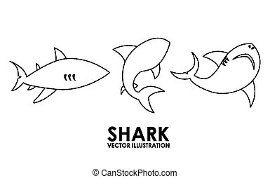 shark alert design, vector illustration eps10 graphic
