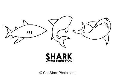 shark alert design, vector illustration eps10 graphic