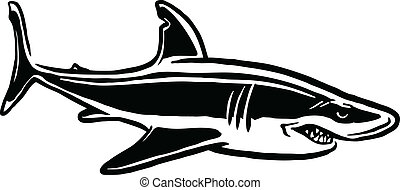 shark attack - black and white illustration of shark
